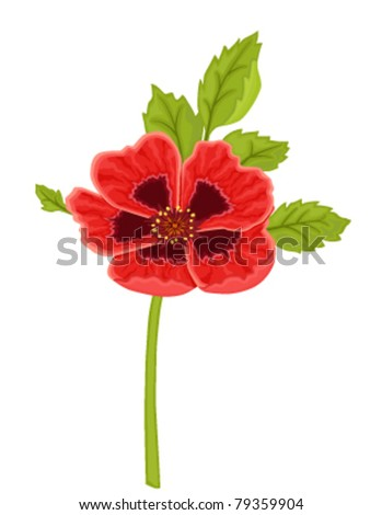 Red poppy flower. Isolated over white background. Vector file saved as EPS 8, all elements layered, grouped, no gradients, no effects, easy print.