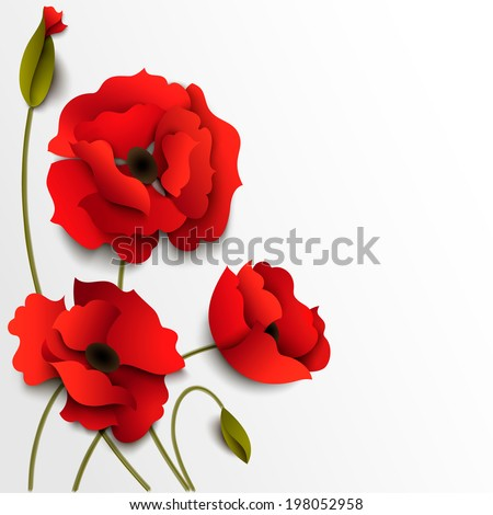 red poppy flowers paper floral