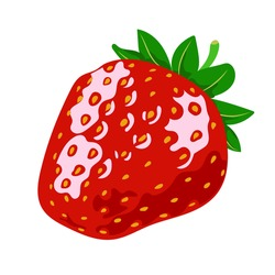 Red ripe strawberries, summer seasonal fruits, fruit print, juicy red strawberries, vector illustration in flat style.