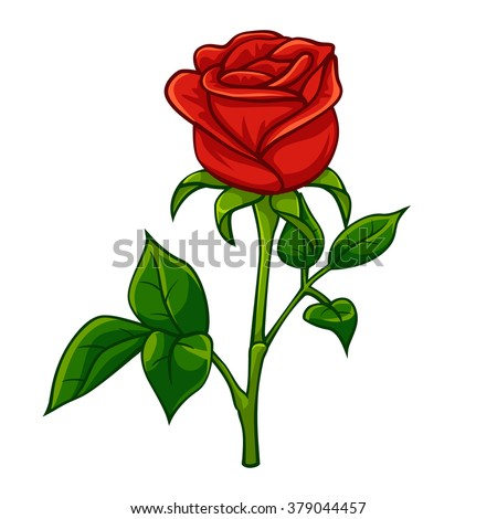 red rose cartoon style  vector