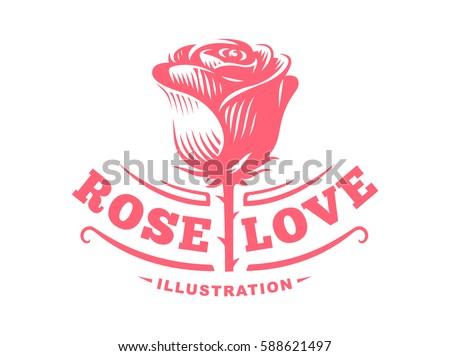 red rose logo   vector