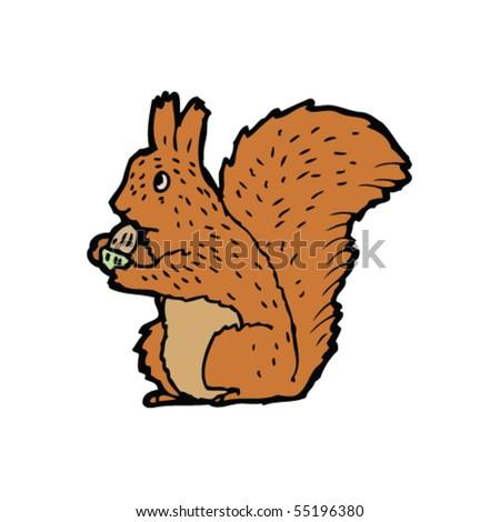 red squirrel illustration
