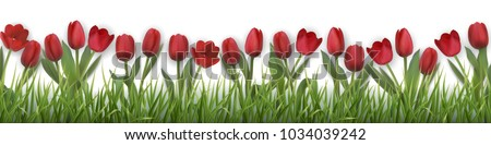 red tulips and grass realistic