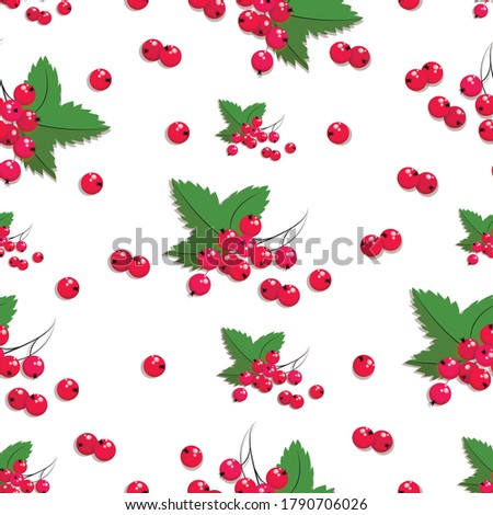 redcurrant pattern vector