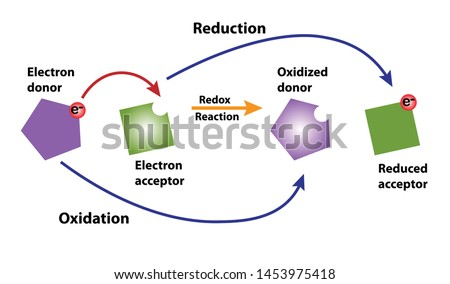 Redox-reaction in reduction and oxidation showing loss and gain of electron.