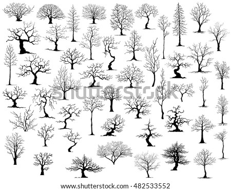 ree on white background vector