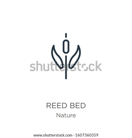 reed bed icon thin linear reed