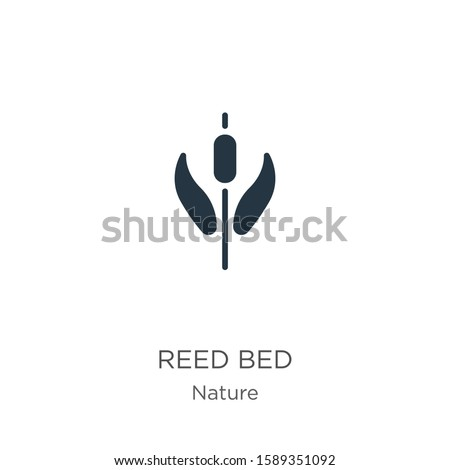 reed bed icon vector trendy