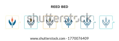 reed bed vector icon in 6
