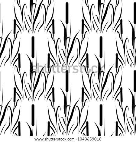 reed  cattail background