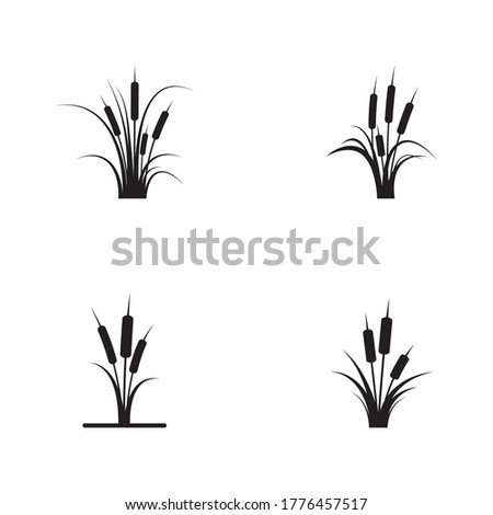 Reeds icon vector design template and symbol Сток-фото ©