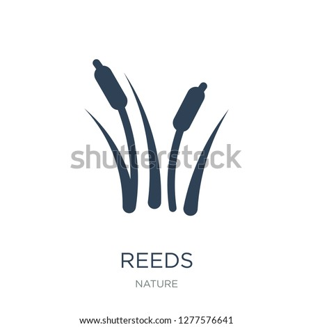 reeds icon vector on white background, reeds trendy filled icons from Nature collection, reeds vector illustration