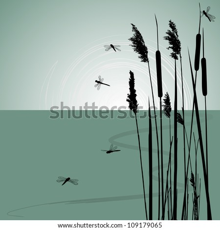 reeds in the water and  few