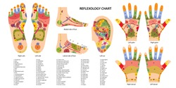 Reflex zones of the feet, ears and hands with description of internal and body parts. Superior, lateral and medial views of foot. Palms and dorsal side of wrists. Chinese medicine. Vector illustration