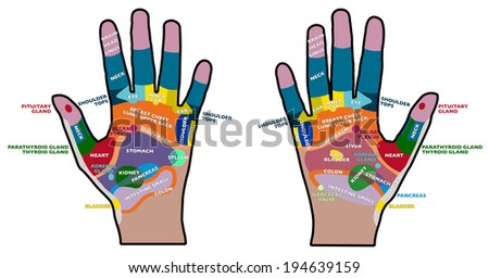 Reflexology handheld, hands, palms, health, massage