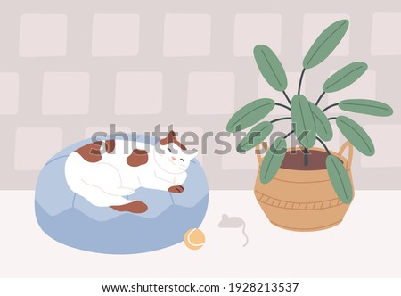 Relaxed cat sleeping in its bed in cozy room with plant. Cute sleepy pet lying on cushion at home. Colored flat vector illustration of kitty dreaming on pillow