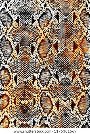 reptile or Snake skin pattern texture.Fashionable print.Fashion and stylish background