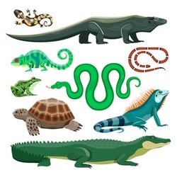 Reptiles and amphibians. Lizard, crocodile, turtle, snake, iguana, salamander, frog, chameleon. Terrarium pet reptile, pond animals vector set. Tropical or wildlife natural fauna characters