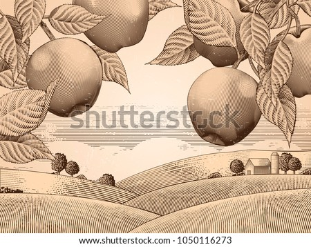 Retro apple orchard, engraving countryside scenery for design uses, attractive background