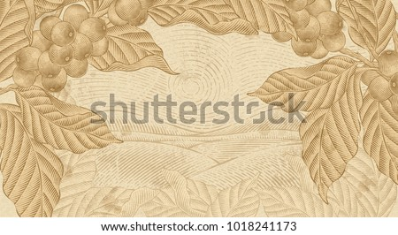 Retro coffee plants background, plants with field scenery in etching shading and ink drawing style