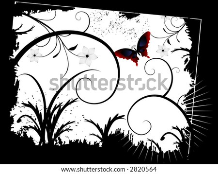 butterfly wallpaper border. utterfly wallpaper image