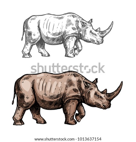 Rhinoceros wild African animal vector sketch icon. Savanna rhino symbol for wildlife fauna and zoology or hunting sport team trophy symbol and nature zoo adventure club design