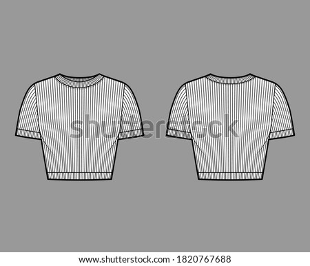 Ribbed cropped cotton-jersey t-shirt technical fashion illustration with scoop neck, short sleeves, close fit. Flat outwear sweater apparel template front back white color. Women men unisex knit top Foto stock ©