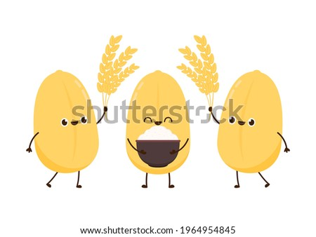 Rice character design. rice vector on white background. rice seed. Paddy rice character.