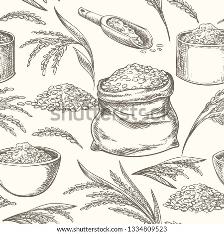 Rice doodle pattern. Wheat or rice hand drawn background, oats wild ear or spike and grains bowl graphic healthy vector illustration
