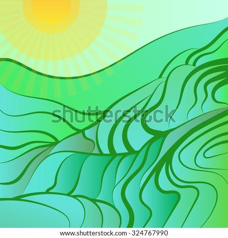 rice field vector illustration