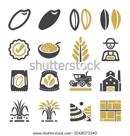 rice icon set