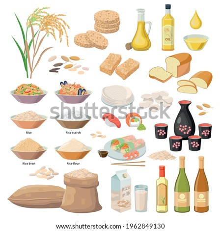 Rice products, food from rice, oil, flour, bran, starch, milk, Puffed rice, popped rice cakes, Sake, wine , bread, sushi, chips, Bánh tráng, paper, kernels etc. Vector set of infgraphic elements.