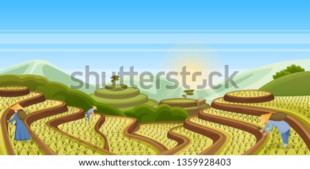 Rice terrace fields, vector cartoon landscape illustration. Asian harvesting agriculture horizontal background. China rural nature view. People harvest rice in field.