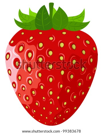 Ripe berry a vector strawberry on a white background