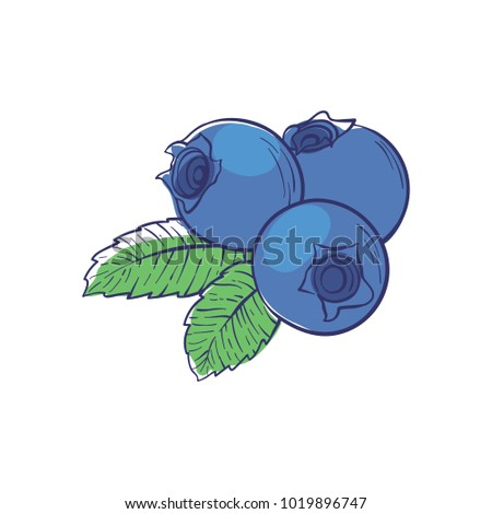 Ripe blueberry icon isolated on white background. Natural sweet food, healthy vegan nutrition vector illustration.