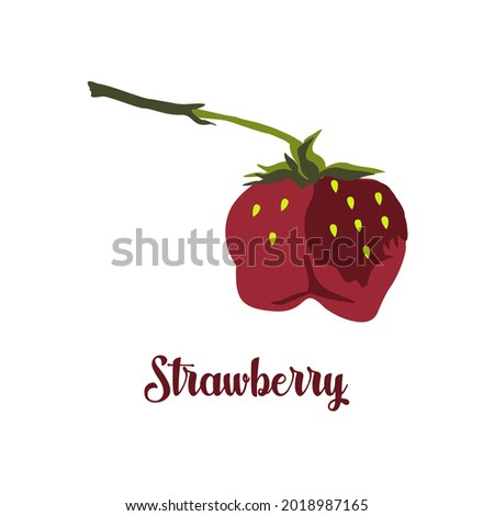 Ripe strawberries of an unusual shape. Juicy summer red berry. Vector drawing