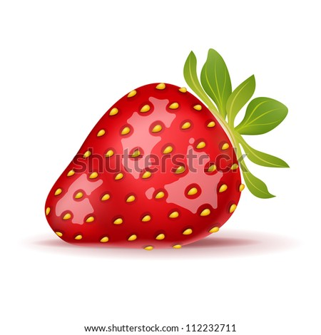 Ripe strawberry isolated on white. Vector illustration