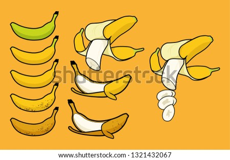 Ripeness different colors chart, single peel banana, and peel cut off banana. Ripeness including of green underripe, barely ripe, ripe, very ripe, and overripe. isolated on background - Fruit Vector