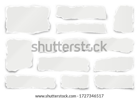 Ripped paper strips. Realistic crumpled paper scraps with torn edges. Shreds of notebook pages. Vector illustration.