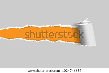 ripped paper vector of ripped