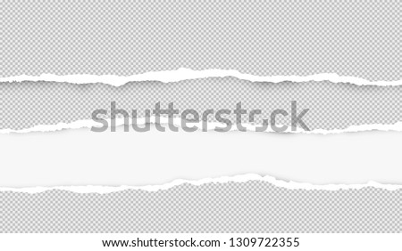 Ripped squared horizontal grey paper strips for text or message are on white background. Vector illustration