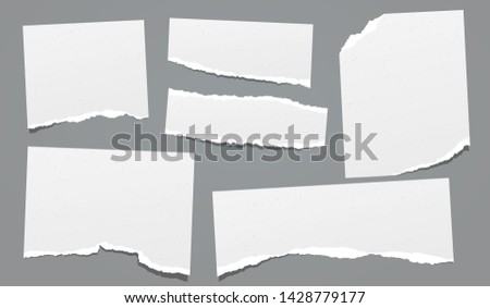 Ripped, torn note, notebook grainy paper strips, copybook sheet stuck on dark grey background. Vector illustration