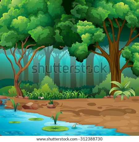 river run through the jungle