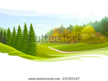 road across a meadow and pine