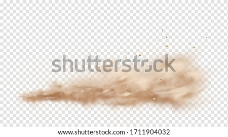 Road dust cloud with flying stones and particles isolated on transparent background. A cloud of dust sand flying from under the wheels of a fast-moving car or motorcycle. Realistic vector illustration