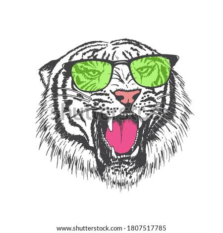 roar of tiger dressed in sunglasses.Print design.Vector illustration Foto stock ©