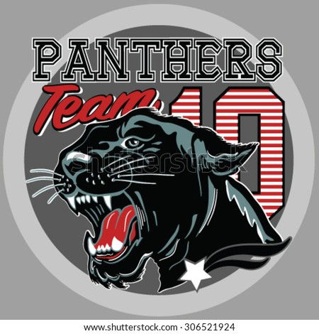 roaring panthervarsity team