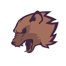 Roaring wolverine head emblem on white background, symbol of aggressive beast