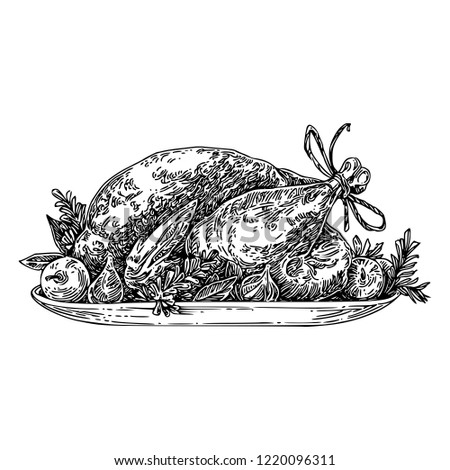 Roasted turkey on platter with fruits. Sketch. Engraving style.