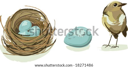 Robin nest, egg, and baby bird together in one vector illustration